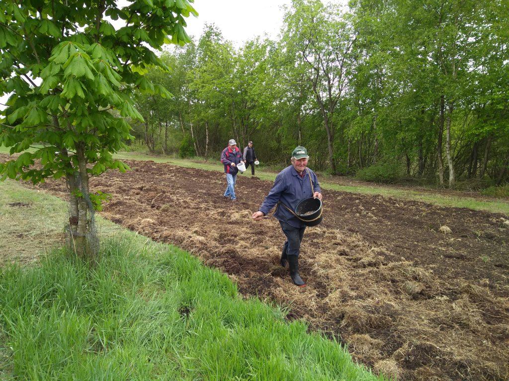 Die alteingesessenen Bauern machen es vor. So wird die Saat ausgebracht.